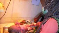 Bayi yang Dibuang di Belakang Rumah Warga