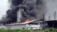 Kebakaran Pabrik Tepung di Kecamatan Pungging, Kabupaten Mojokerto [Lintas Jatim]