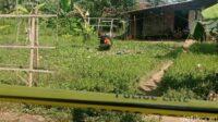 Lokasi Pembacokan Warga Tajinan Malang