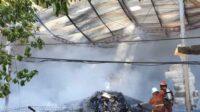 Petugas Damkar Sedang Menjinakkan Api